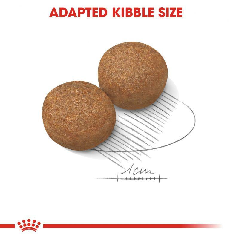 عکس دانه غذای خشک سگ رویال کنین مدل Adult Maxi وزن 1 کیلوگرم