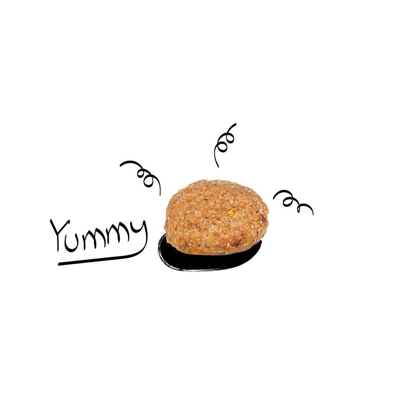 عکس دانه غذای خشک سگ فیدار مدل Mini Adult وزن 2 کیلوگرم