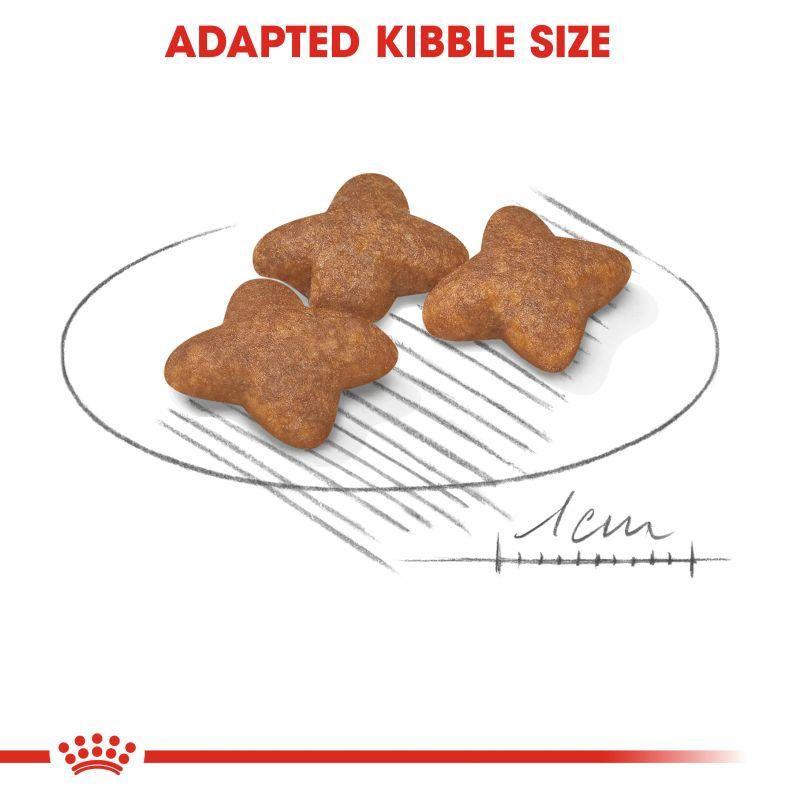 عکس دانه غذای خشک بسته غذای خشک و تر سگ رویال کنین مدل Mini Adult