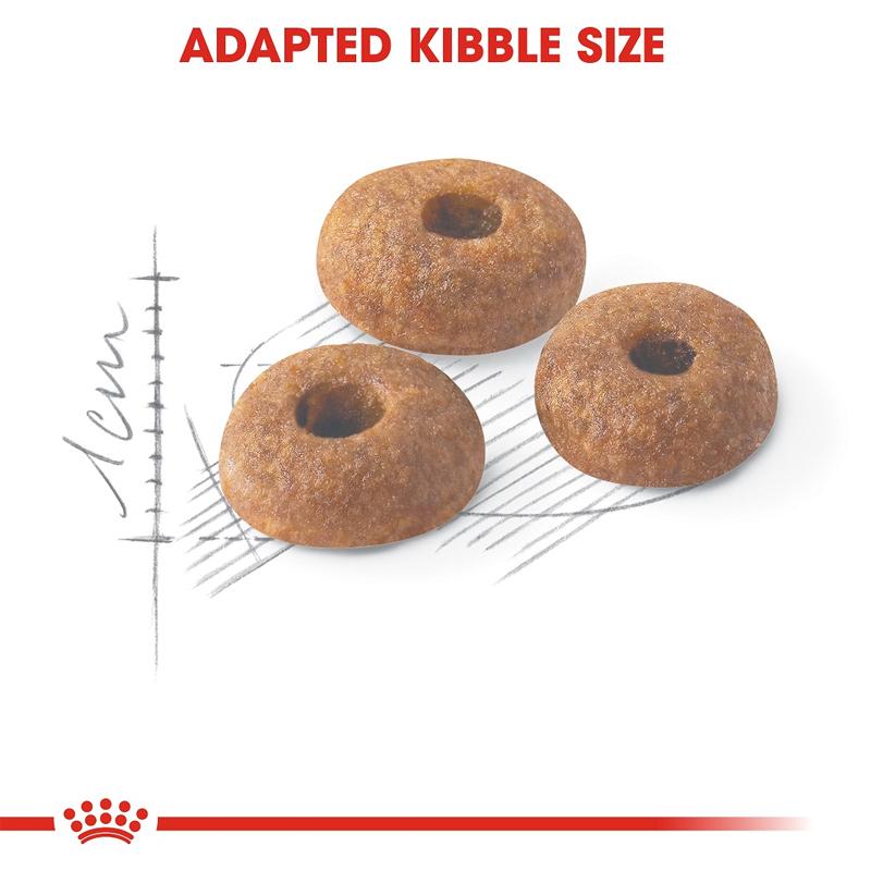 عکس دانه غذای خشک گربه رویال کنین مدل Regular Fit 32 وزن 400 گرم