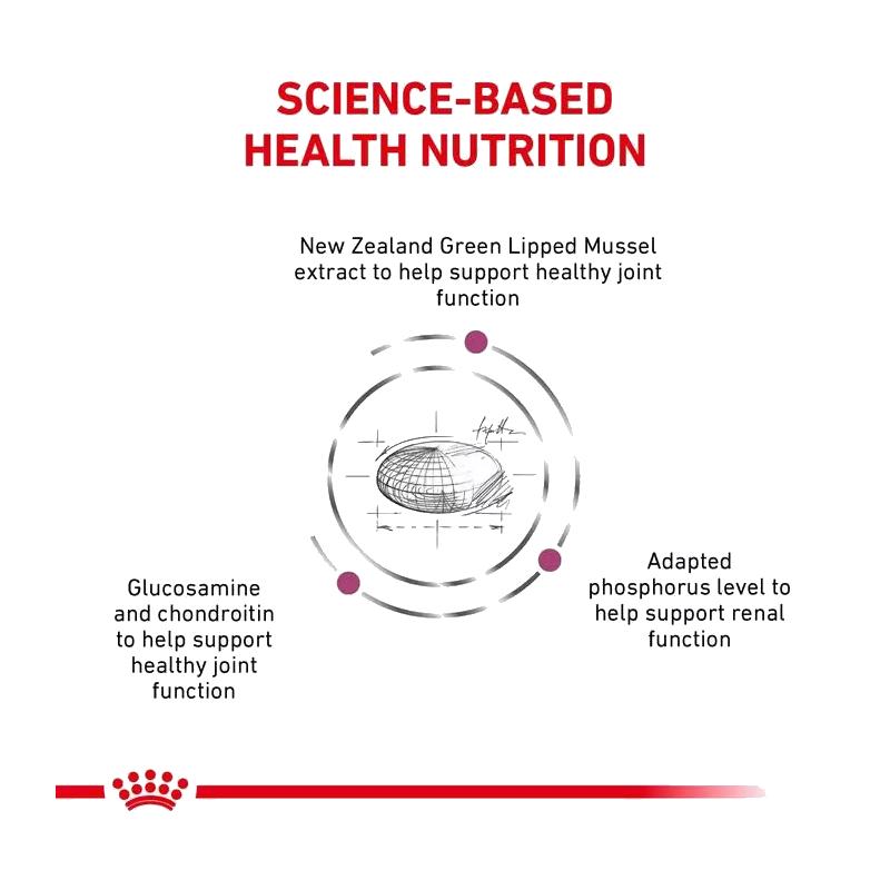 عکس مشخصات غذای خشک گربه رویال کنین مدل Mobility وزن 2 کیلوگرم