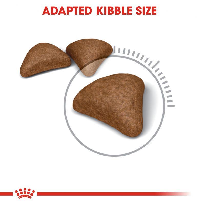 عکس دانه غذای خشک گربه رویال کنین مدل HairBall Care وزن 10 کیلوگرم