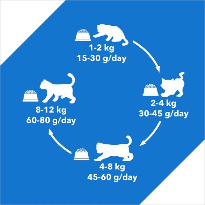 راهنمای غذای خشک گربه درولز مدل Adult Tuna & Salmon وزن 8.4 کیلوگرم