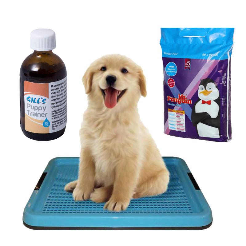 عکس باندل بسته بهداشتی و آموزشی دستشویی سگ مجموعه 3 عددی
