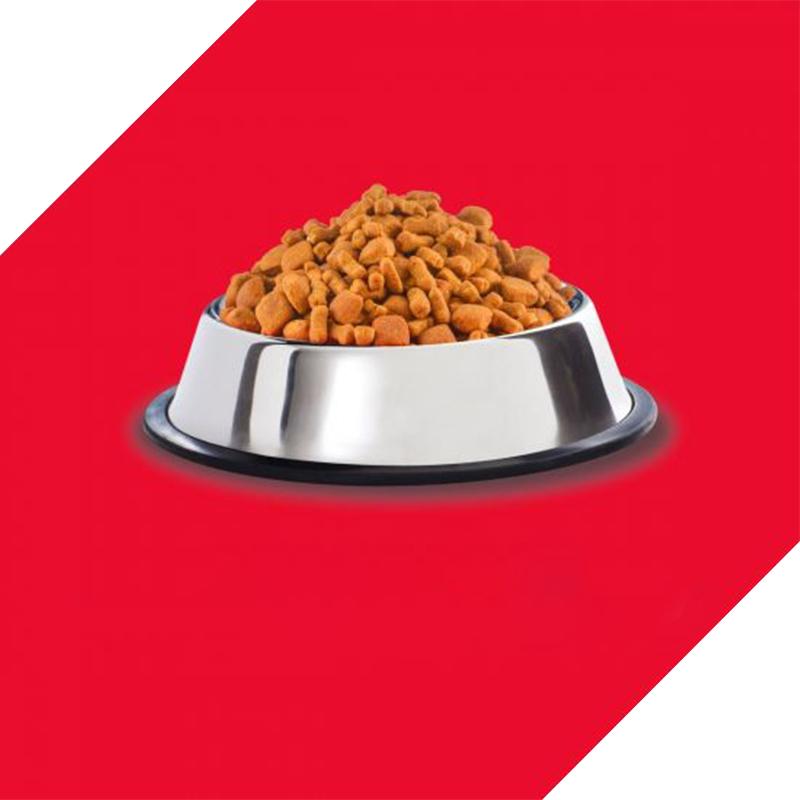 عکس دانه غذای خشک سگ درولز مدل Adult Chicken & Egg وزن 3 کیلوگرم