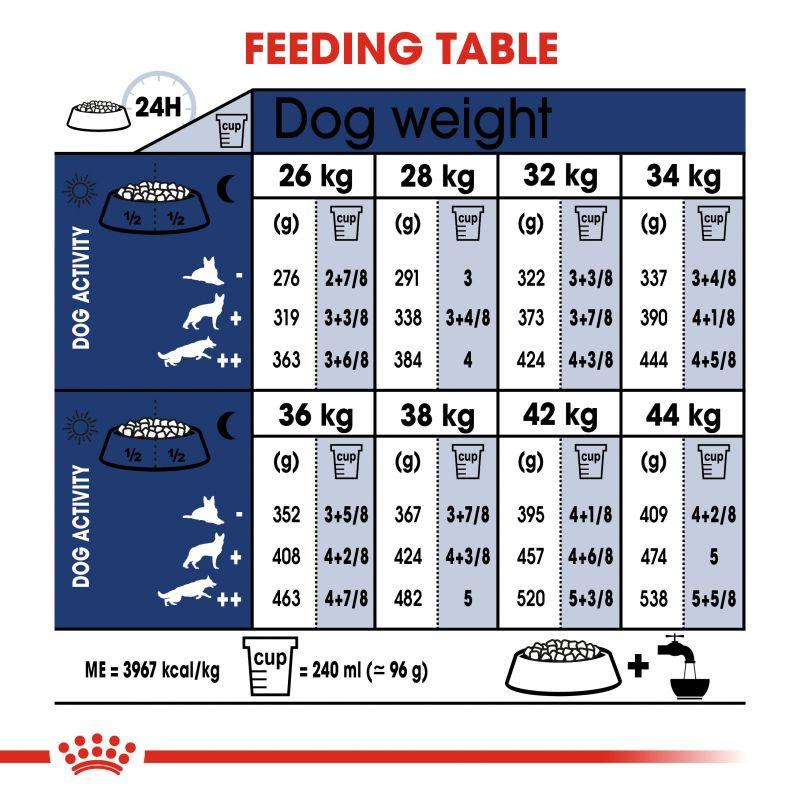 عکس راهنمای تغذیه غذای خشک سگ رویال کنین مدل Adult Maxi وزن 1 کیلوگرم