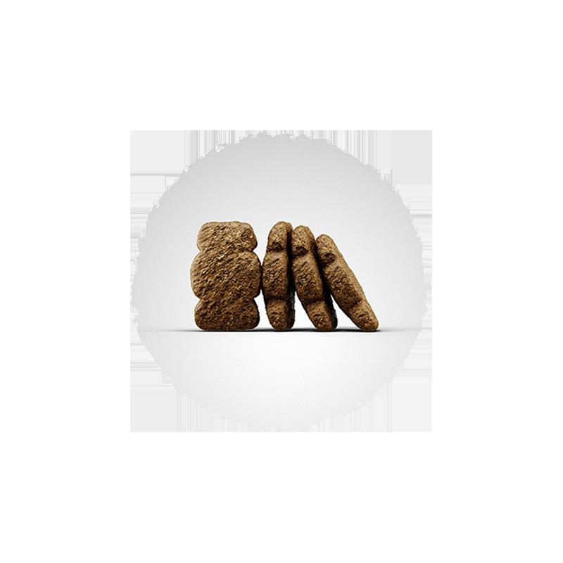 عکس دانه غذای خشک سگ جوسرا مدل Kids وزن 3 کیلوگرم