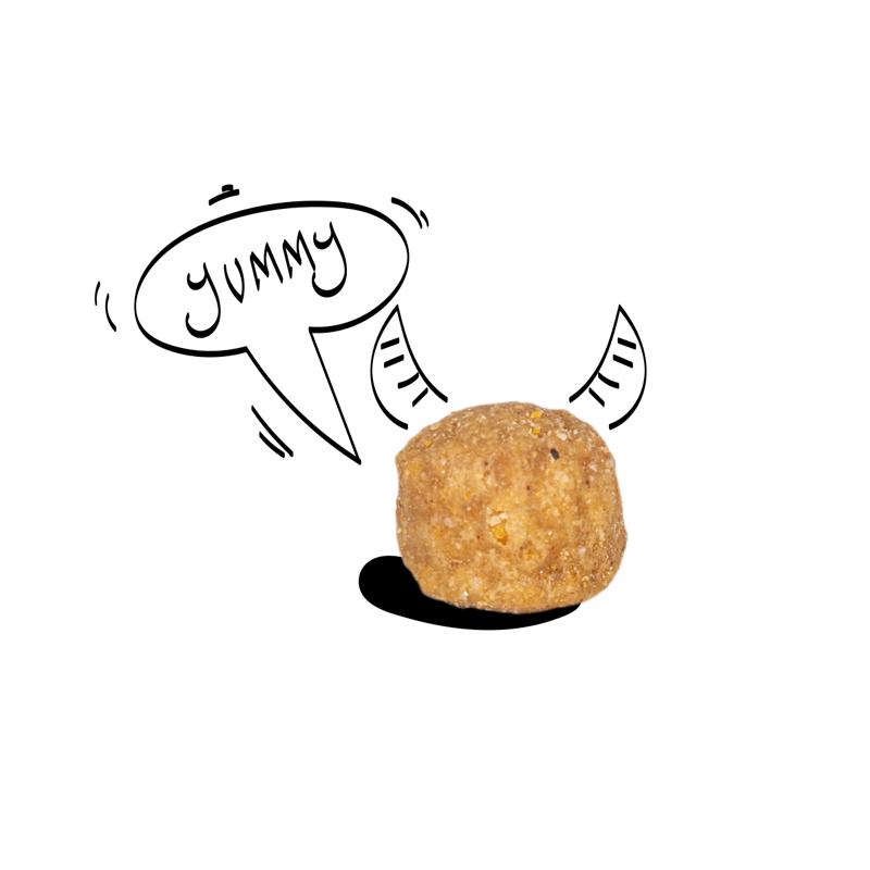 عکس دانه غذای خشک سگ سلبن مدل Small Junior وزن 2 کیلوگرم
