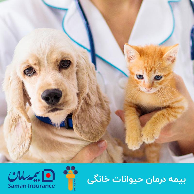 عکس تبلیغاتی بیمه یکساله درمان حیوانات خانگی سامان
