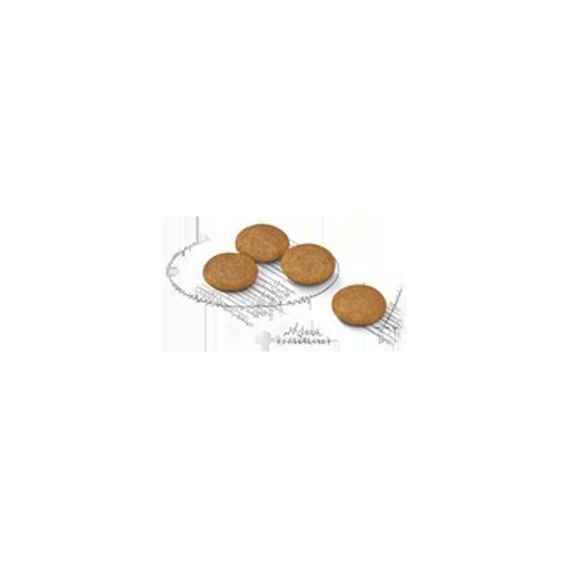 غذای خشک سگ درما کام فورت رویال کنین Royal Canin DermaComfort Mini وزن 3 کیلوگرم دانه