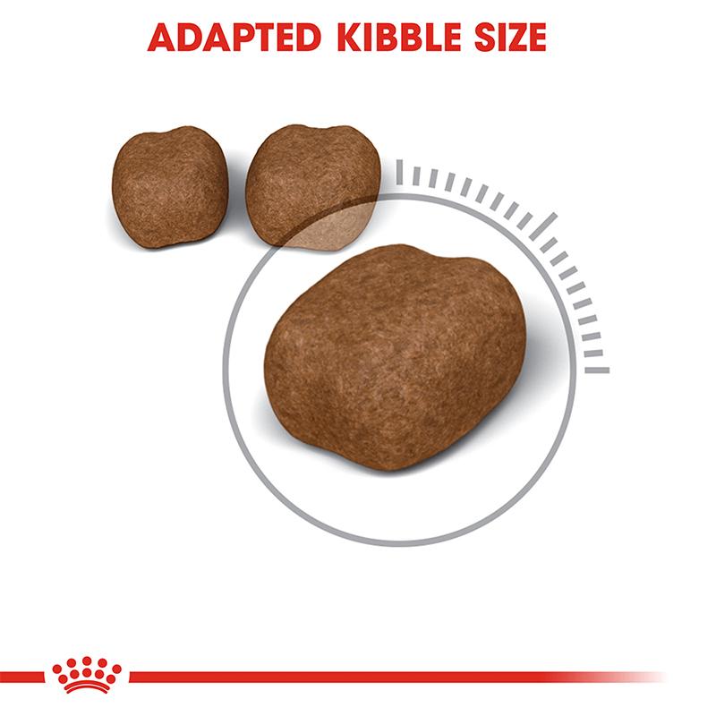 عکس دانه غذای خشک گربه رویال کنین مدل Dental وزن 1.5 کیلوگرم