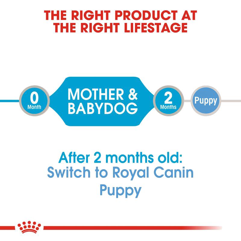 عکس توضیحات کنسرو غذای سگ رویال کنین مدل Starter Mother & Babydog وزن ۱۹۵ گرم