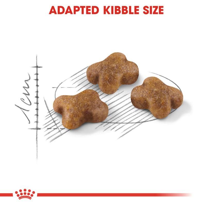عکس دانه غذای خشک گربه رویال کنین مدل Kitten وزن 1 کیلوگرم