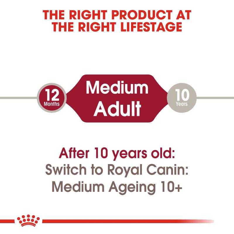 عکس معرفی پوچ سگ رویال کنین مدل Medium Adult وزن 140 گرم