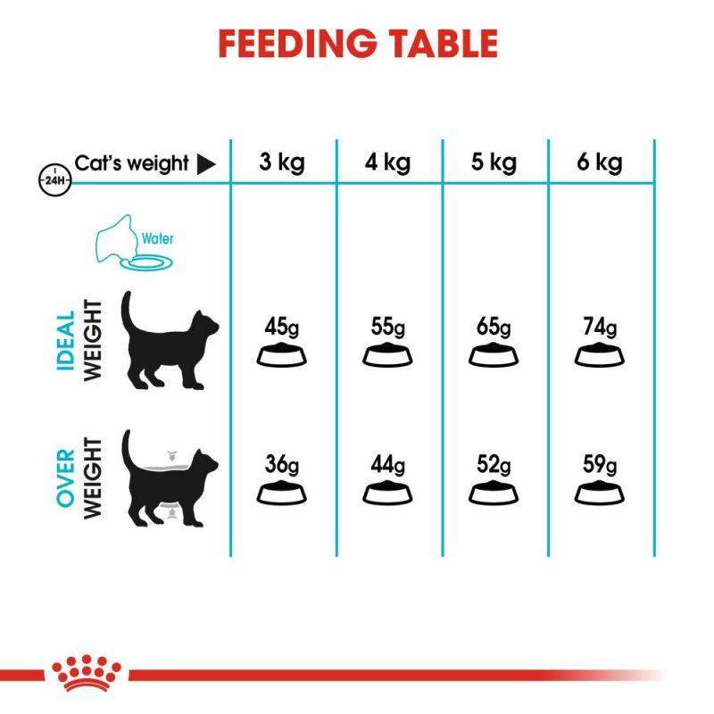 راهنمای تغذیه غذای خشک گربه رویال کنین مدل Urinary Care وزن 2 کیلوگرم