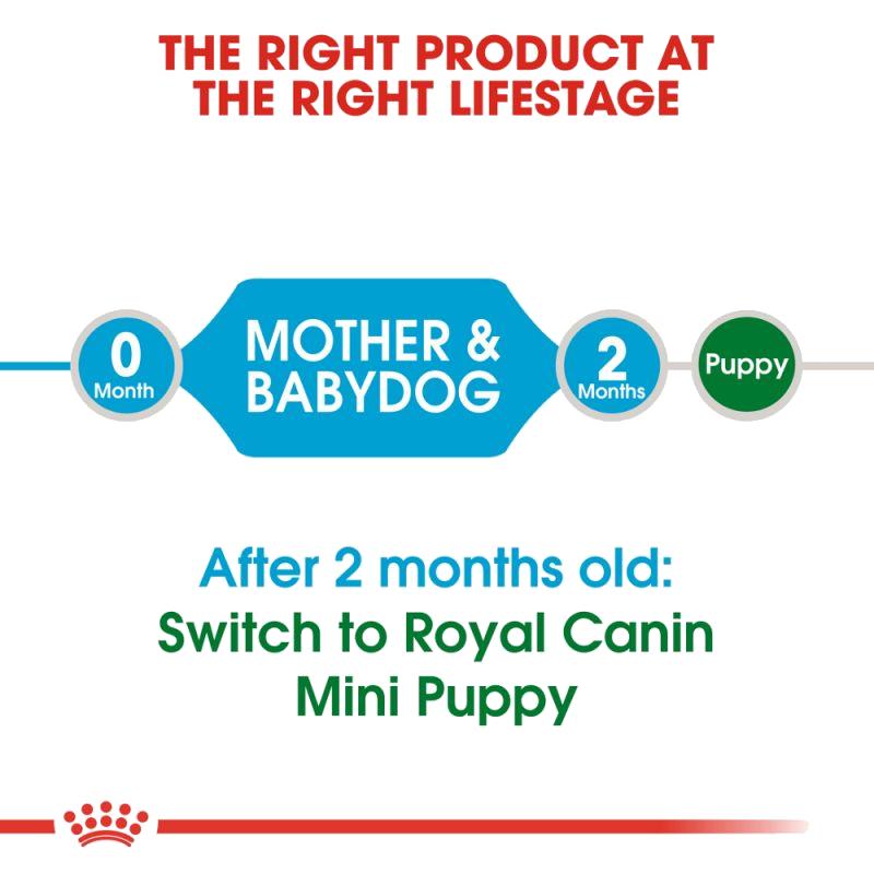 عکس مشخصات دوم غذای خشک سگ رویال کنین مدل Mini Starter وزن 3 کیلوگرم