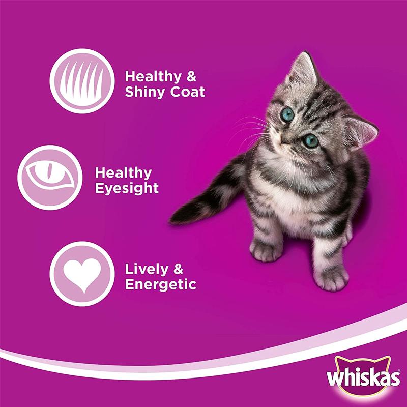 عکس مشخصات غذای خشک بچه گربه ویسکاس مدل Ocean Fish وزن 1.1 کیلوگرم