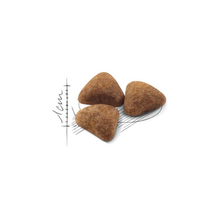 عکس دانه غذای خشک گربه رویال کنین مدل Indoor Home Life وزن 10 کیلوگرم