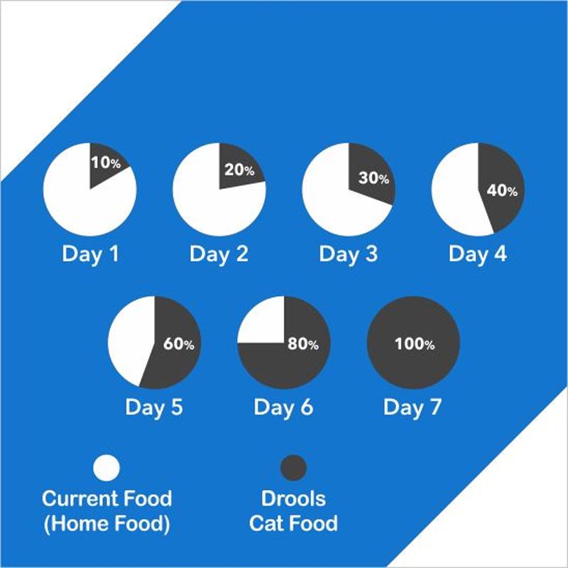 راهنمای تغذیه غذای خشک گربه درولز مدل Adult Tuna & Salmon وزن 8.4 کیلوگرم