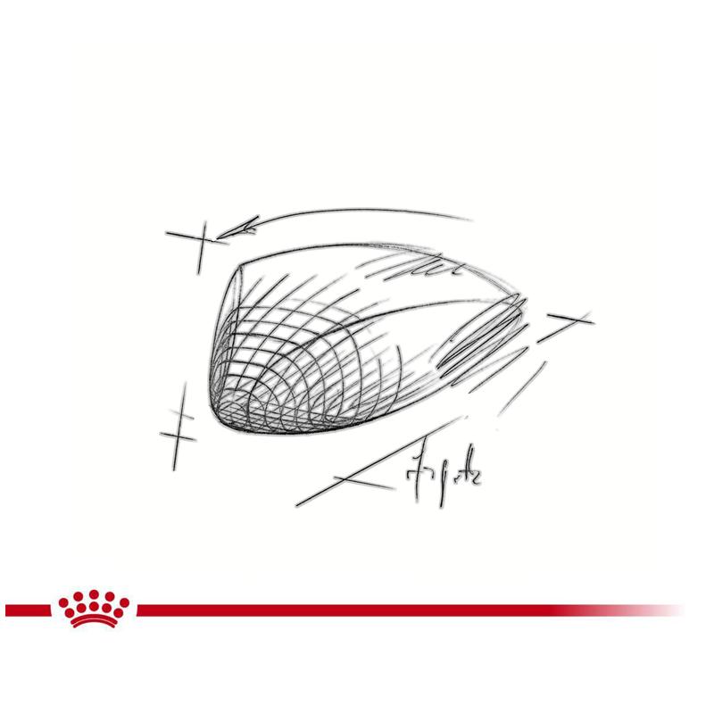 عکس جزییات غذای خشک گربه رویال کنین مدل HypoAllergenic وزن 2.5 کیلوگرم