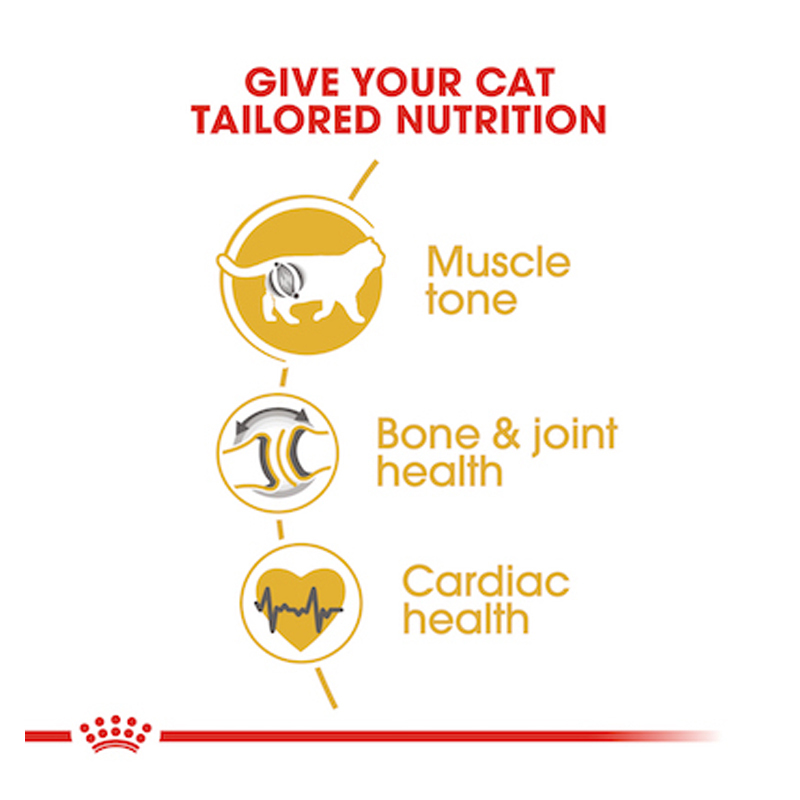 عکس مشخصات بسته غذای خشک و تر گربه رویال کنین مدل Adult British ShortHair