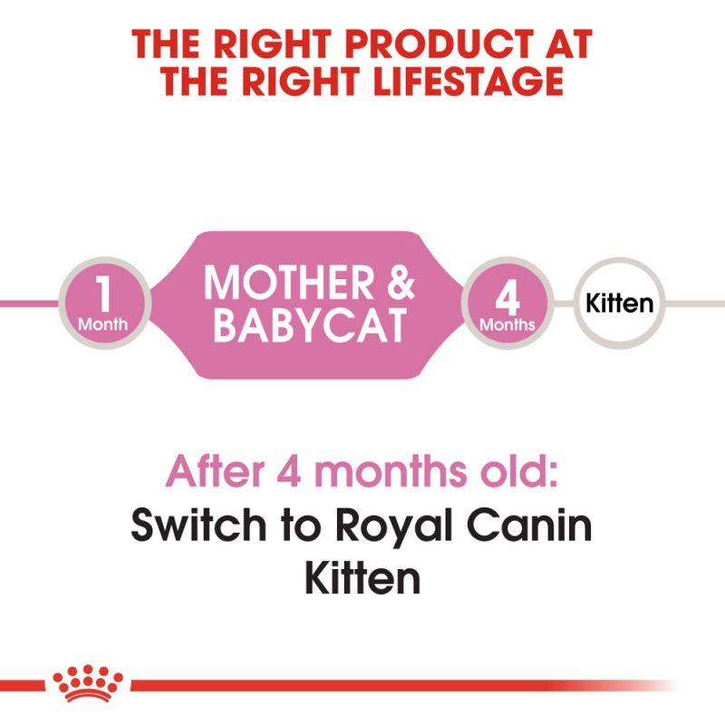 عکس توضیحات غذای خشک گربه رویال کنین مدل Mother & Baby وزن 2 کیلوگرم