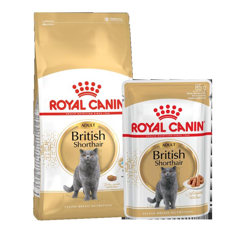 عکس بسته بندی بسته غذای خشک و تر گربه رویال کنین مدل Adult British ShortHair