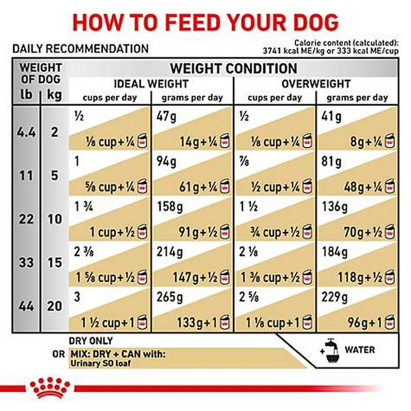 راهنمای تغذیه غذای خشک سگ رویال کنین مدل Urinary S/O وزن 2 کیلوگرم