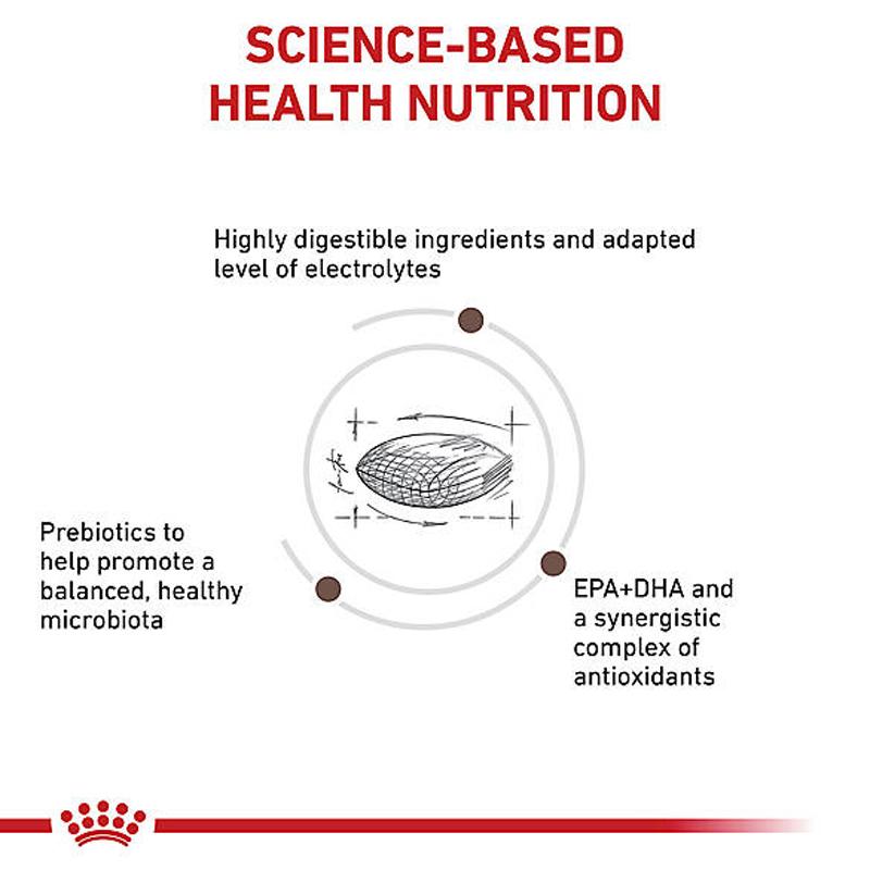 عکس دانه غذای خشک سگ رویال کنین مدل Gastro Intestinal وزن 2 کیلوگرم