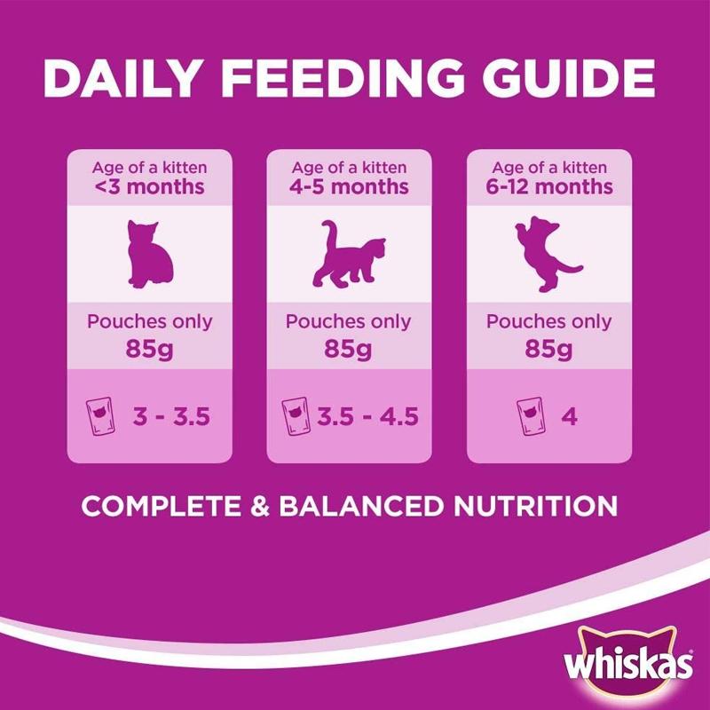 عکس راهنمای تغذیه پوچ بچه گربه ویسکاس مدل Mackerel وزن 85 گرم