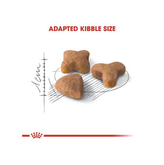 عکس دانه غذای خشک گربه رویال کنین مدل Sensible وزن 2 کیلوگرم