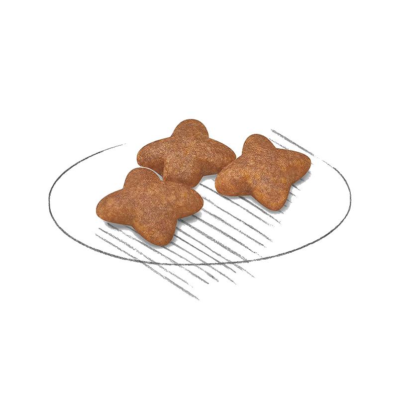عکس دانه غذای خشک سگ اورلاندو مدل Small Breeds Adult وزن 3 کیلوگرم