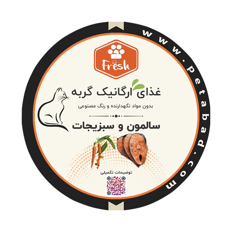 غذای ارگانیک گربه پت آباد Fresh مدل ماهی سالمون و سبزیجات وزن 250 گرم
