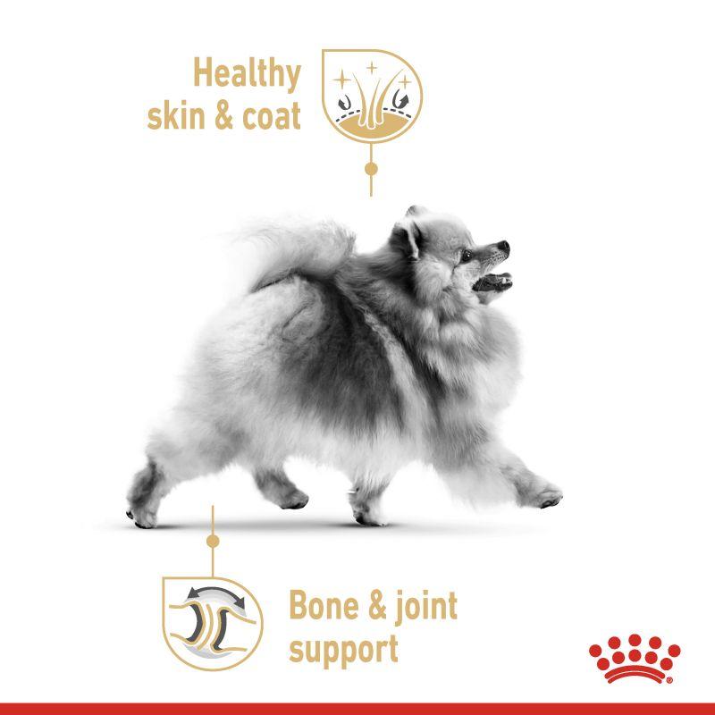 عکس تبلیغاتی غذای خشک سگ رویال کنین مدل Adult Pomeranian وزن 1.5 کیلوگرم