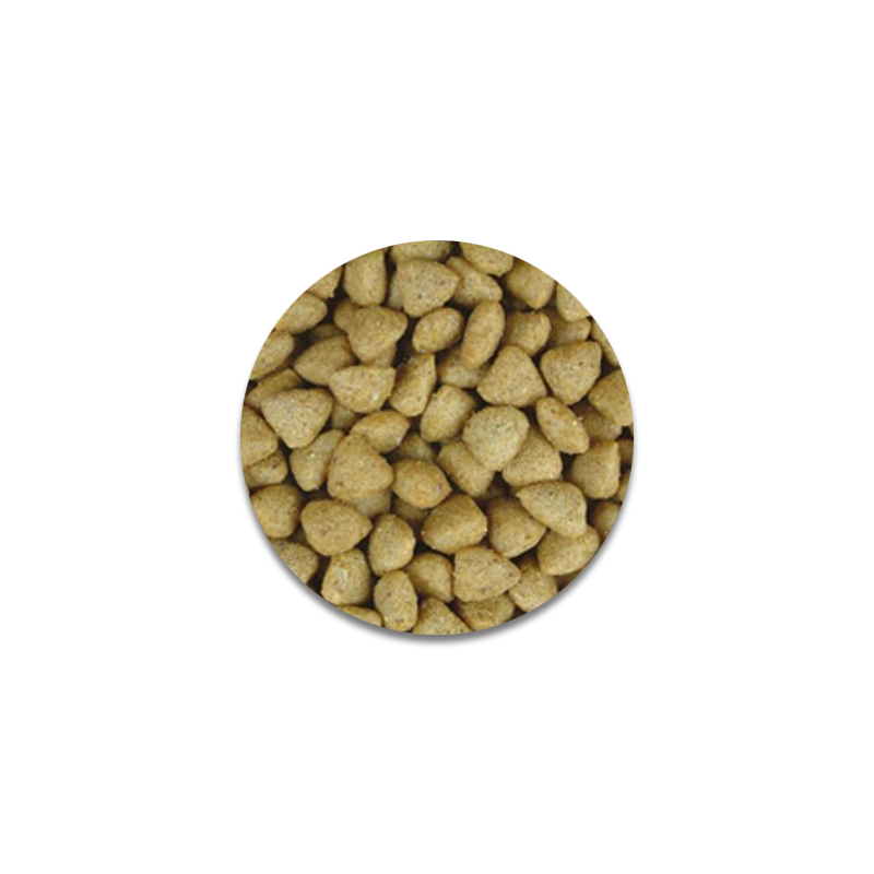 عکس دانه غذای خشک گربه جوسرا مدل Josicat duck Fish وزن 3 کیلوگرم + 300
