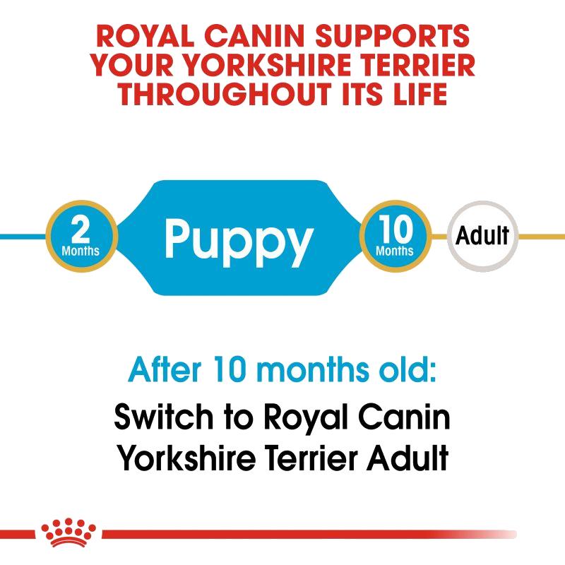 عکس مشخصات غذای خشک سگ رویال کنین مدل Puppy Yorkshire Terrier وزن 1.5 کیلوگرم