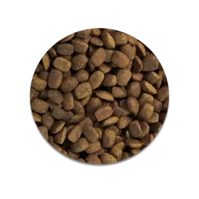 عکس دانه غذای خشک گربه رفلکس پلاس مدل Adult Lamb & Rice وزن ۱.۵ کیلوگرم