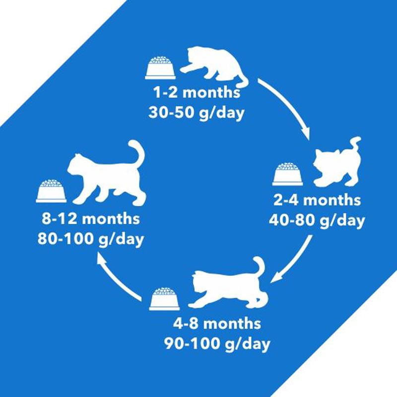 راهنمای غذای خشک گربه درولز مدل Kitten Ocean Fish وزن 1.2 کیلوگرم