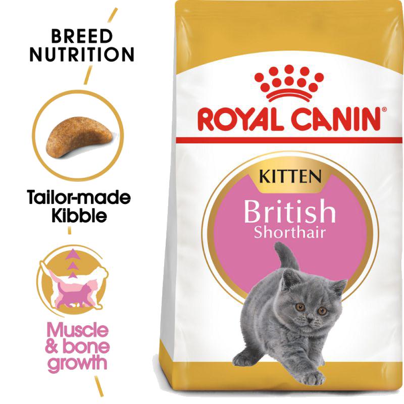 عکس جزییات غذای خشک گربه رویال کنین مدل Kitten British Shorthair وزن ۲ کیلوگرم