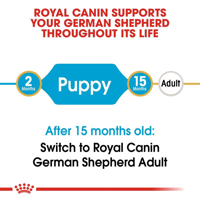 عکس راهنمای غذای خشک توله سگ رویال کنین مدل German Shepherd Puppy وزن 3 کیلوگرم