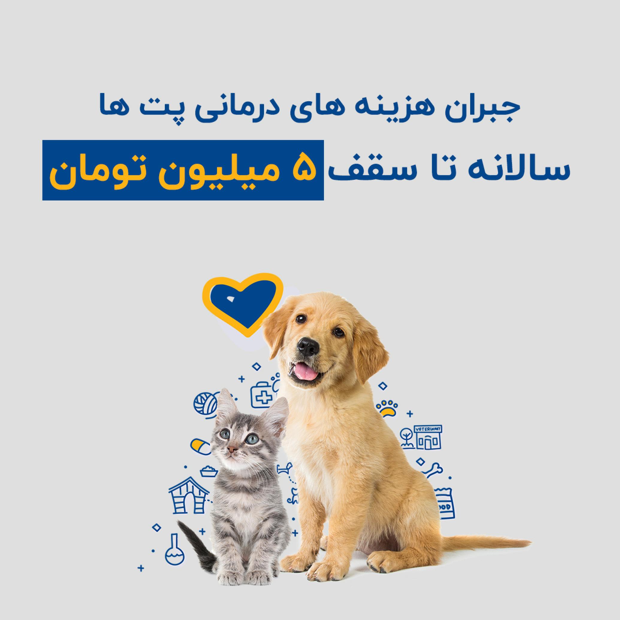 تبلیغاتی بیمه یکساله درمان حیوانات خانگی سامان
