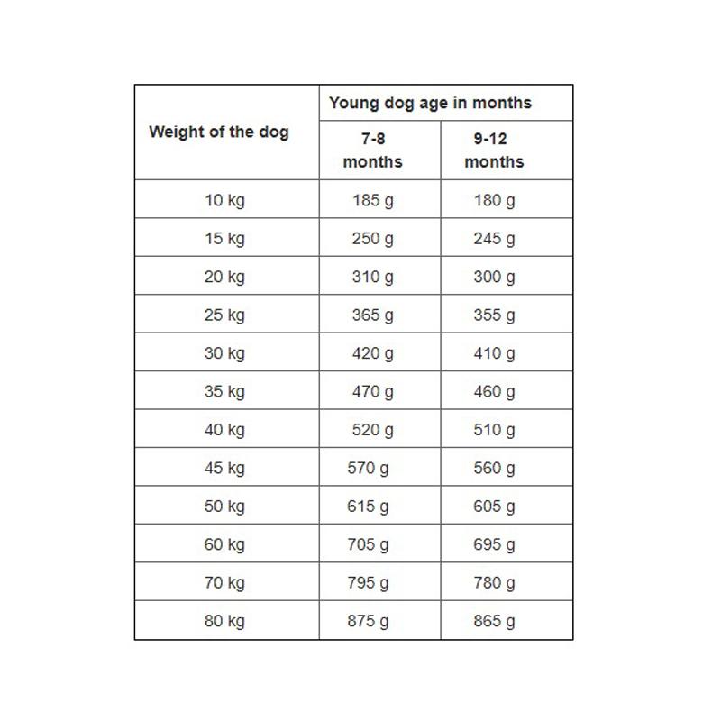 عکس دوم راهنمای تغذیه غذای خشک توله سگ هپی داگ مدل Puppy NatureCroq وزن 1 کیلوگرم