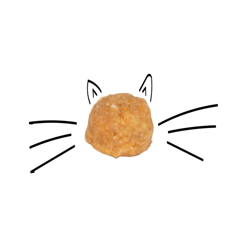 عکس دانه غذای خشک بچه گربه سلبن مدل Kitten وزن 2.5 کیلوگرم