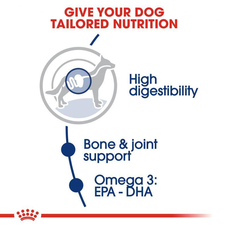 عکس راهنمای غذای خشک سگ رویال کنین مدل Adult Maxi وزن 1 کیلوگرم