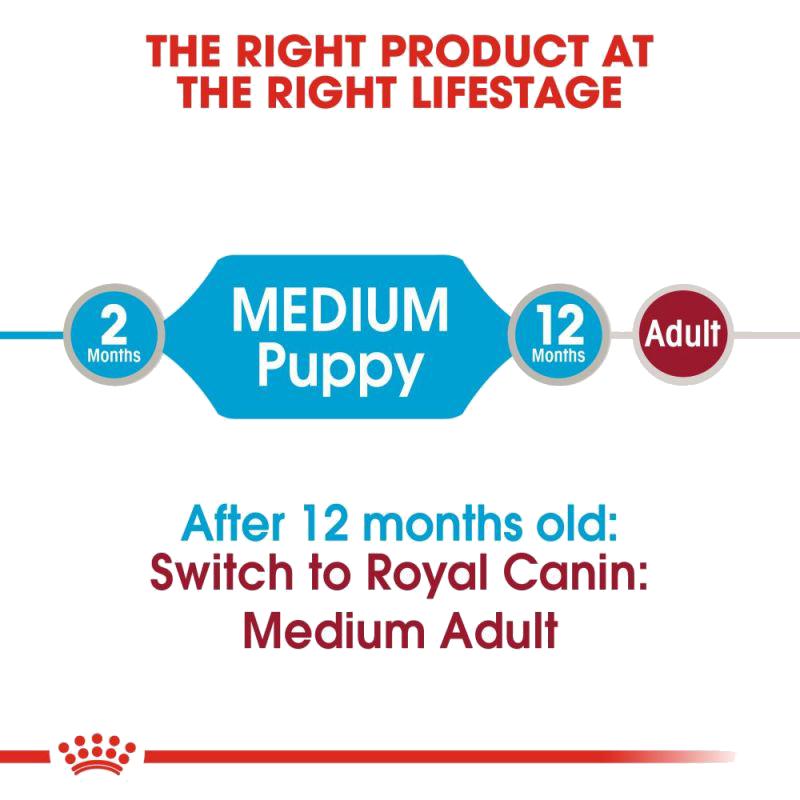 عکس معرفی پوچ توله سگ رویال کنین مدل Medium Puppy وزن 140 گرم