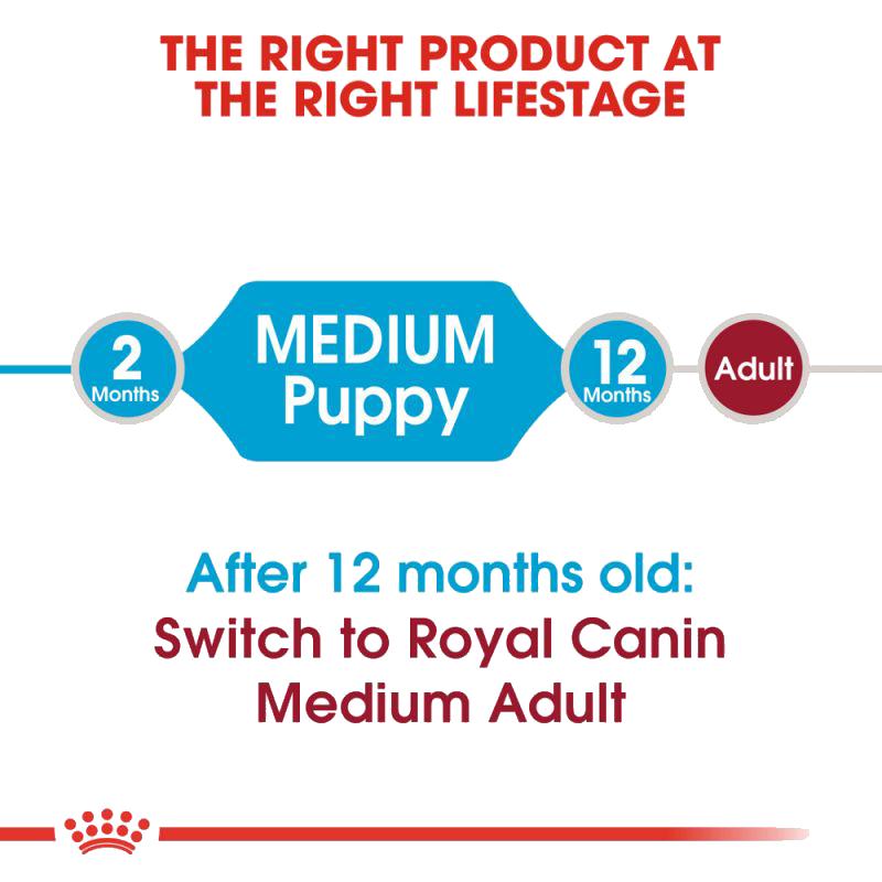 عکس توضیحات غذای خشک توله سگ رویال کنین مدل Medium Puppy وزن 4 کیلوگرم