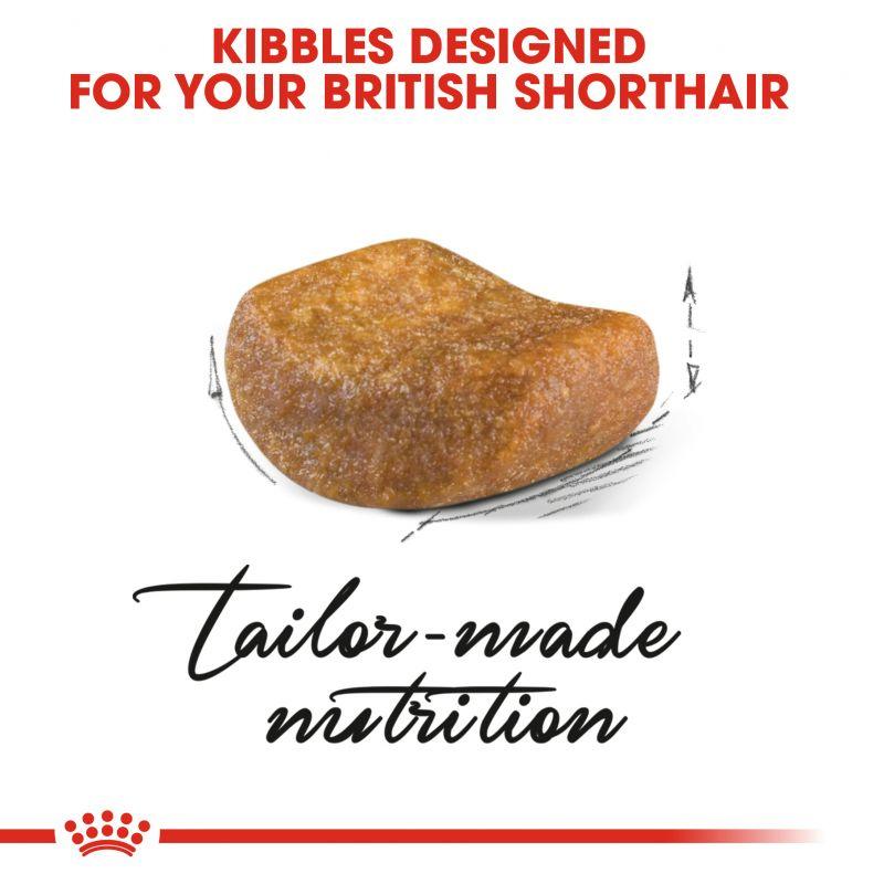 عکس دانه غذای خشک بسته غذای خشک و تر گربه رویال کنین مدل Adult British ShortHair