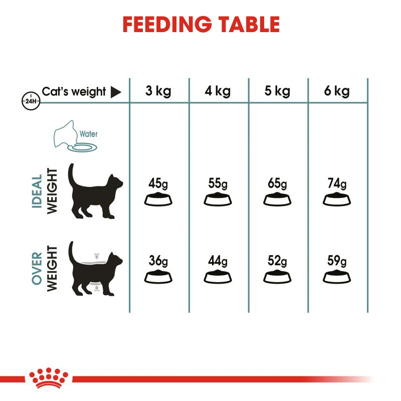 عکس راهنمای تغذیه غذای خشک گربه رویال کنین مدل HairBall Care وزن 10 کیلوگرم