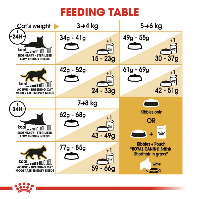عکس راهنمای تغذیه بسته غذای خشک و تر گربه رویال کنین مدل Adult British ShortHair