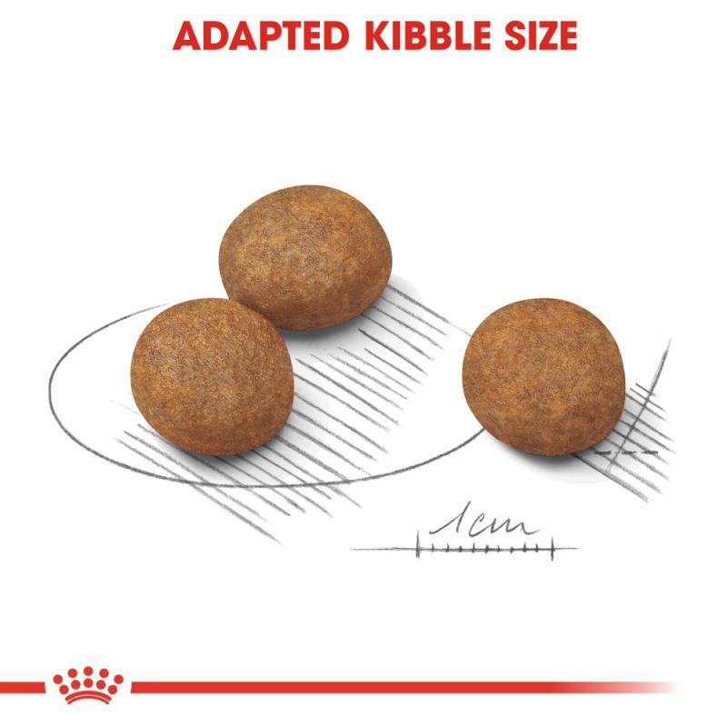 عکس دانه غذای خشک توله سگ رویال کنین مدل Maxi Puppy وزن 4 کیلوگرم